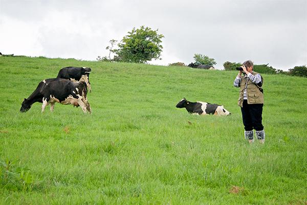 Ireland Photography Workshop