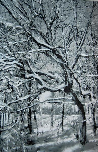 Winter Trees_image_transfer_workshops